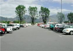 The domed Century 21 building was demolished in August 1998 to provide parking for the new Century 16 theater.  The trees in the background are all that are left of the original Century 21 site. - , Utah