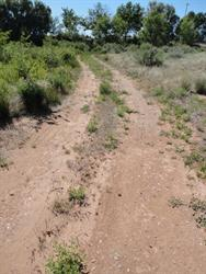 The road turns west, around the back of what was once the Frontier Theatre. - , Utah